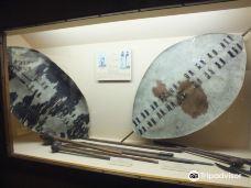 Natural History Museum-布拉瓦约